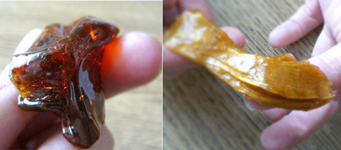 зверушки из ракушек своими руками фото